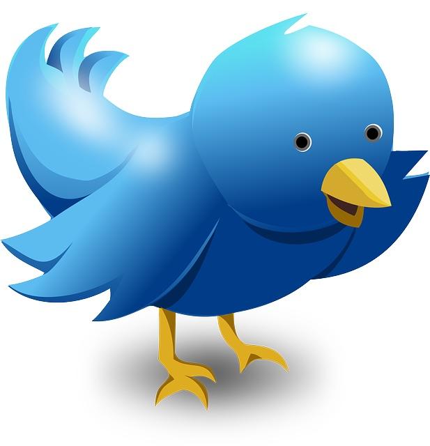 Gagner de l'argent avec Twitter